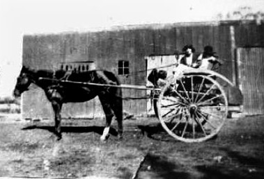 Gertrude  Schimanski with Ngaire and friend in the milk cart