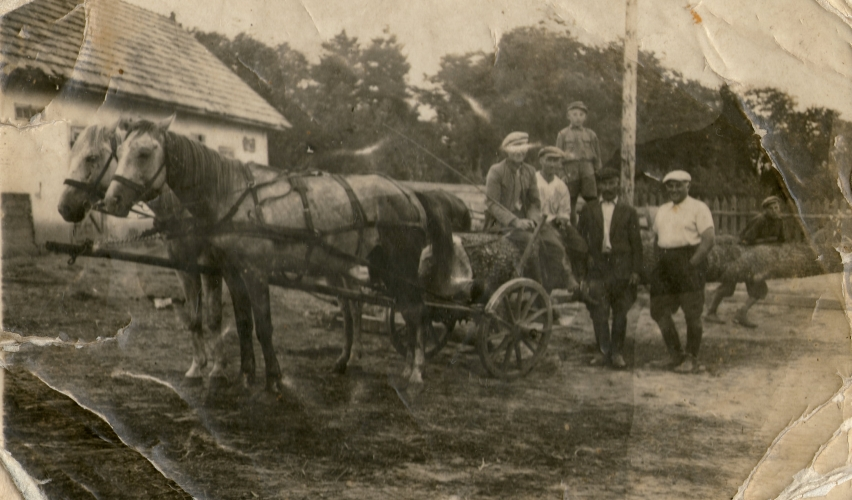 Group  surround a cart carrying a log. Bogdan on the log behind his father, driving