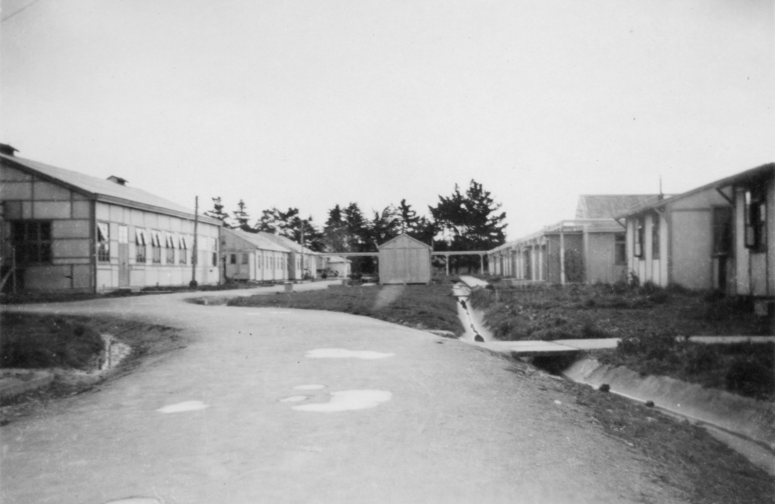Taken from a bend in  the road, a shot of the larger hall on one side and the ends of the girls' buildings on the right.