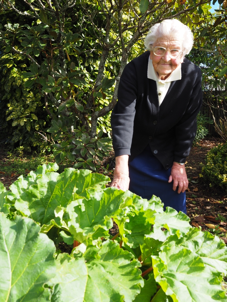 Therese  Kowalewski in her garden leaning over some huge rhubard leaves