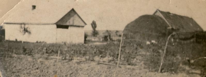 The  Marchewa's farm in Jazłowiecka