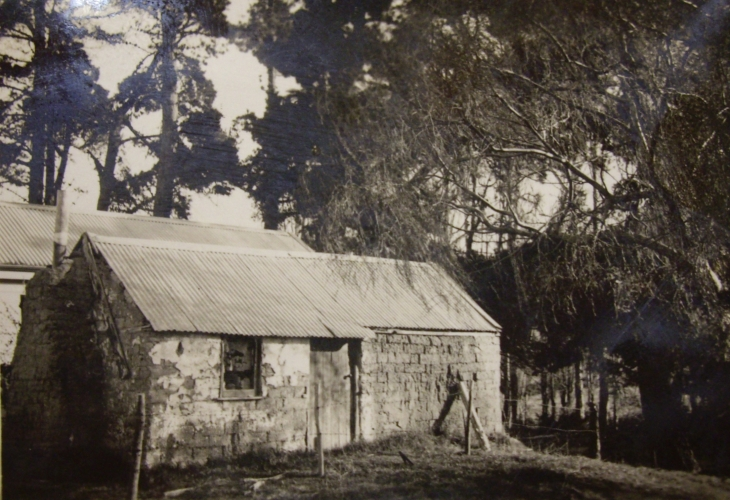 Reeves Road sod house