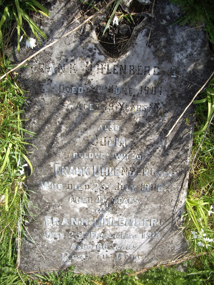 The Uhlenberg headstone lying among the grass at the Midhirst Old cemetery.